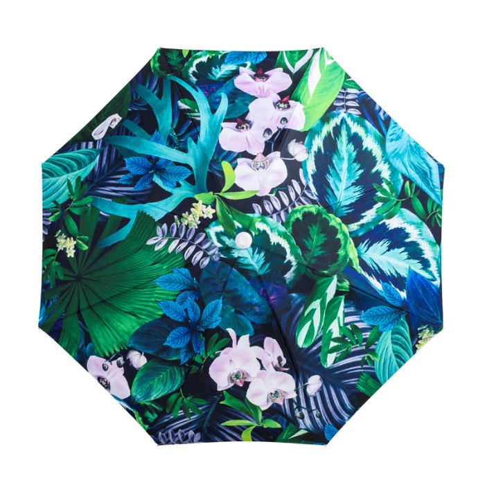 바질뱅스 Basil Bangs Premium  Umbrella - Botanica by Louise Jones